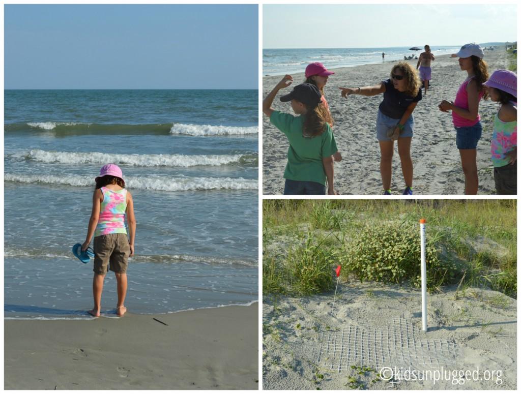 beachcollage copy