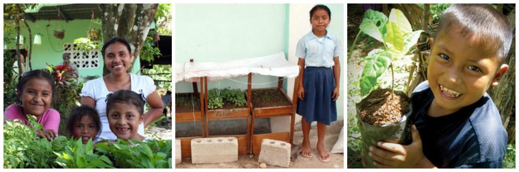 Photos courtesy of Sustainable Harvest International