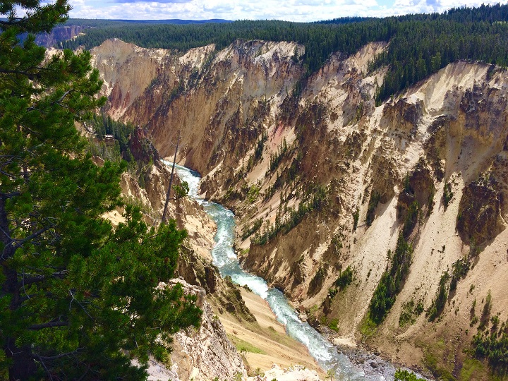 Yellowstone-Erin Gifford2