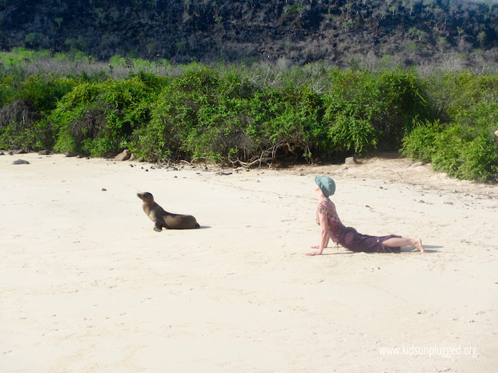Yoga with sea lions on the Galapagos Islands